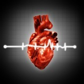 15226939-medical-abstract-backgrounds-with-human-3d-rendered-heart