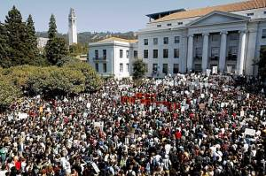 Berkeley-rally-v-cuts