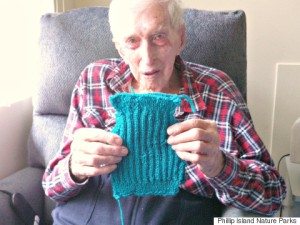 s-OLDEST-MAN-KNITS-PENGUIN-SWEATER-480x360