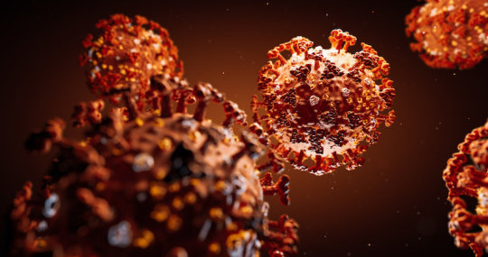 Some Good News From Researchers Studying the Novel Coronavirus